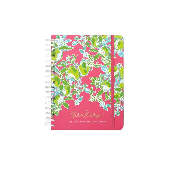 2015/2016 Large 17 Month Agenda from Lilly Pulitzer Pink Lemonade