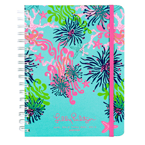 17-Month 2012-2013 Large Agenda from Lilly Pulitzer-Dirty Shirley