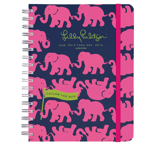 2013/2014 Large 17 Month Agenda from Lilly Pulitzer Tusk in Sun