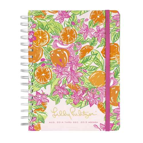 2014/2015 Large 17 Month Agenda from Lilly Pulitzer Orange Grove Monkeys